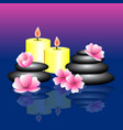 blue pink background with spa elements spa stones vector image