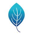blue silhouette plant tropical leaf nature design vector image