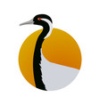 demoiselle crane flat design vector image