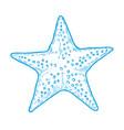 hand drawn marine starfish vector image vector image
