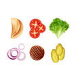 set ingredients for taco tortilla vector image vector image