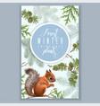 winter squirrel vertical banner vector image vector image