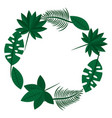 wreath differents leaves plant natural vector image
