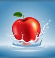 apple in water splash vector image vector image