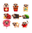 cute funny pug dog character inside fast food vector image vector image