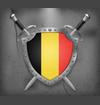 flag of belgium the shield with national flag vector image