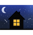 Night sky and house vector image