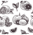 orange fruits seamless pattern vintage citrus vector image vector image