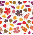seamless pattern autumn leaves yellow foliage vector image