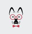 dog wearing glasses on white background animal vector image