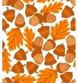 acorn background with oak leaves vector image