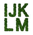 Alphabet ijklm vector image