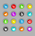 birds colored plastic round buttons icon set vector image