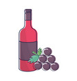 bottle of wine with bunch of grapes icon vector image vector image