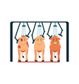 cow washing machine - cartoon cows standing under vector image vector image