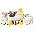 group cute animal farm cartoon character vector image