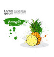 pineapple hand drawn watercolor fruit on white vector image