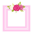 rose white pink purple flower photo frame greeting vector image vector image