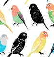 Seamless pattern with colorful hand drawn parrots vector image vector image