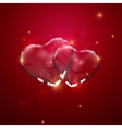 Glass transparent heart couple with sparkles vector image