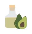 avocado fruit organic oil in glass bottle vector image vector image