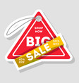 big sale isolated advertising sticker vector image