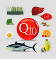 coenzyme q10 healthy eating vector image vector image