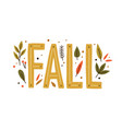 decorative design composition with fall lettering vector image vector image