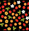 oklahoma seamless pattern in russian tradition vector image
