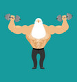 retired athlete and dumbbells strong santa vector image