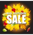 Seasonal big autumn sale business background with vector image vector image