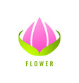 abstract flower logo design vector image vector image