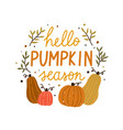 hello pumpkin season cute colorful composition vector image vector image