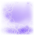 beautiful purple rose flower background vector image vector image