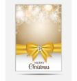 Christmas Snowflakes Website Banner and Card vector image vector image