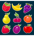Colorful Yummy Fruit Icons vector image