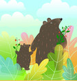 mother bear and bacub animals watercolor style vector image