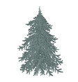hand drawn doodle merry christmas tree icon vector image