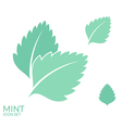Mint Icon set Isolated leaves on white vector image vector image