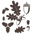 Oak Acorn vector image vector image