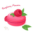 realistic isolated raspberry macaron with fresh vector image vector image