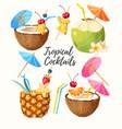set summer cocktails vector image
