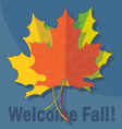 Orange yellow and green oak leaves in autumn over vector image