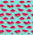cute colorful watermelon on blue summer seamless vector image