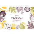 frame with tropical fruits vector image vector image