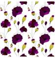 Poppy flower field vector image vector image