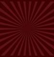 sunburst starburst with ray light bordo color vector image vector image