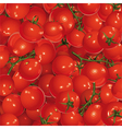 background of tomatoes vector image