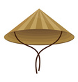 Chinese conical hat vector image vector image