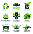 flat icon set for green eco nature vector image vector image